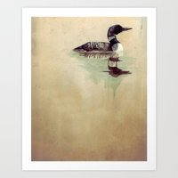Common Loon Art Print