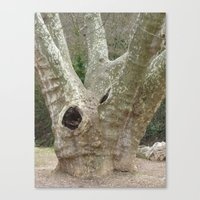 Amazing Tree Trunk Canvas Print
