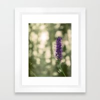 Swizzle Stick Framed Art Print