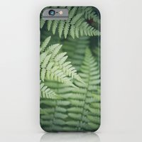 Where the Redwood Fern Grows iPhone 6 Slim Case