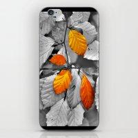 Gold Leaf iPhone & iPod Skin