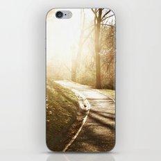 Road to heaven... iPhone & iPod Skin