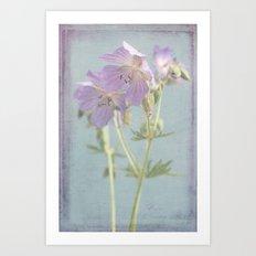 meadow beauties Art Print
