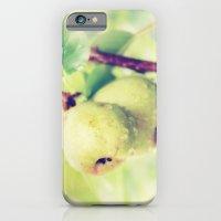 Juicy Snack iPhone 6 Slim Case