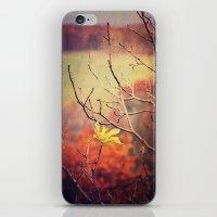 Final Elevation iPhone & iPod Skin