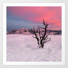 Sunrise in Yellowstone National Park Art Print