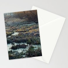 Is This What We've Seen All Along? Stationery Cards