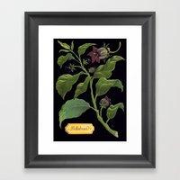 Deadly Nightshade Framed Art Print