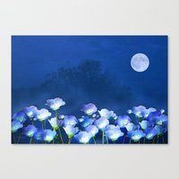 Cornflowers In The Moonl… Canvas Print