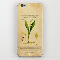 Breaking Bad - Lily Of T… iPhone & iPod Skin