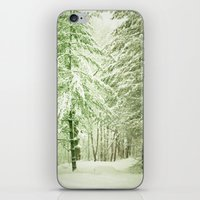 Winter Pine Trees iPhone & iPod Skin