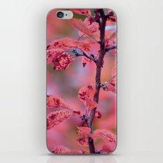 De PinkHarmony  iPhone & iPod Skin