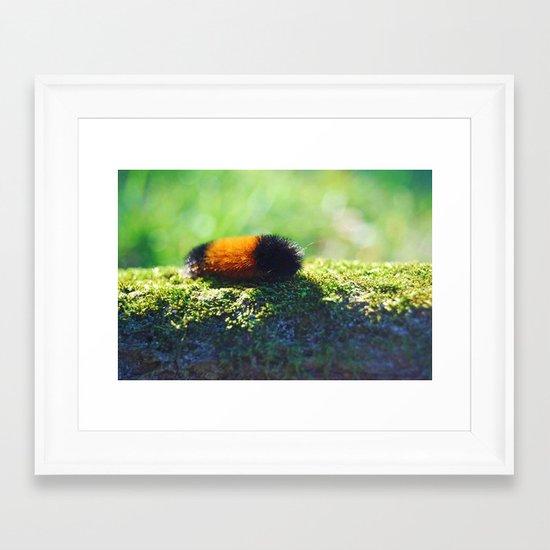 Caterpillar 2 Framed Art Print
