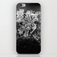 frost crystals iPhone & iPod Skin