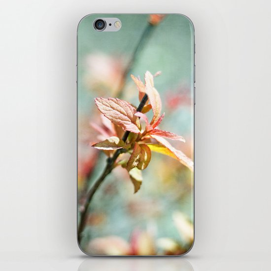 Color Bloom iPhone & iPod Skin