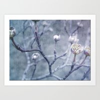 Spring Buds Art Print