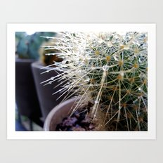 Martha the Cactus  Art Print