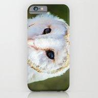 The Barn Owl  iPhone 6 Slim Case