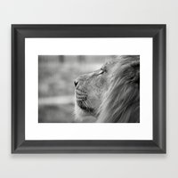 Lion Portrait Framed Art Print