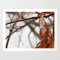Macro Snow Art Print