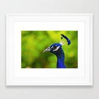 Pretty as a Peacock I Framed Art Print