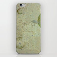 many moons iPhone & iPod Skin