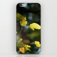 Mulberry Leaves iPhone & iPod Skin