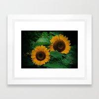 Sonnen Blumen  Framed Art Print