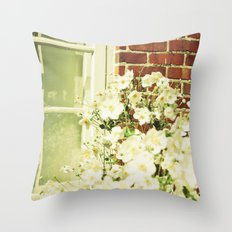 Beauty in an Ordinary Day Throw Pillow