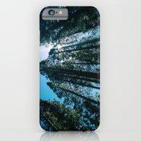 Sequoias iPhone 6 Slim Case