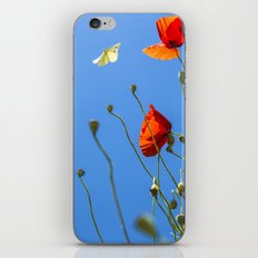 Red Poppies with White Butterfly in Blue Sky  iPhone & iPod Skin