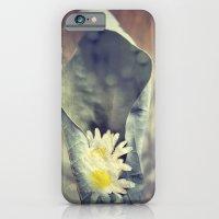 I Know My Daisies iPhone 6 Slim Case