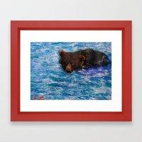 Wildlife Painting Series 5 - Alaska Little Brown Bear swimming in Icy lake Framed Art Print