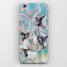 Hummingbirds iPhone & iPod Skin