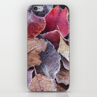 Frosty Ground Cover iPhone & iPod Skin