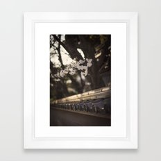 Sakura in Kyoto, Higashiyama 2015 Framed Art Print