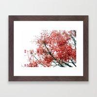 Star Berries Framed Art Print