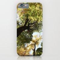 Fall Canopy - Woodland T… iPhone 6 Slim Case