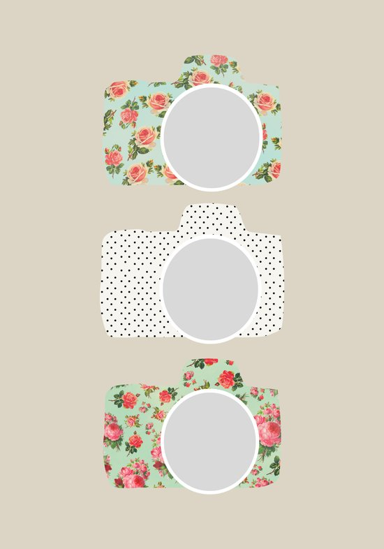 Floral & Polka Dot Cameras Art Print