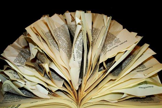 An Open Book Art Print