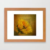 Sunflower Magic Framed Art Print