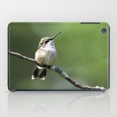 Hummingbird Perch iPad Case