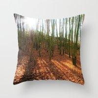Autumn Sun And Shadows Throw Pillow