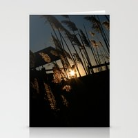 Sunset In The Fall Stationery Cards