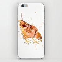 Cheeky Chicken iPhone & iPod Skin