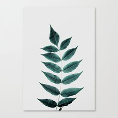 Leaves 3A Canvas Print