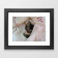 Kitten in Covers Framed Art Print