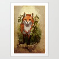 Fox [caming ou of the woods] Art Print