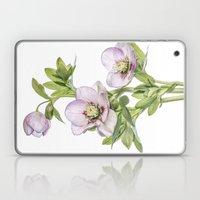 Hellebore Laptop & iPad Skin