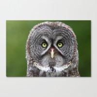 Give A Hoot Canvas Print